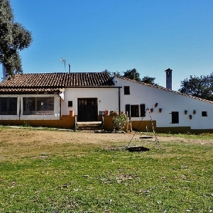 FOR SALE FINCA 13 HA…